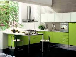 interior kitchen design middle class family modern kitchen
