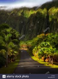 Botanical Gardens Highland Park Road In Hoomaluhia Park Botanical Gardens Oahu Hawaii Stock