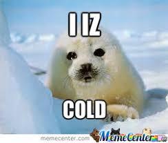 Cold Meme - i am cold by logan gross meme center