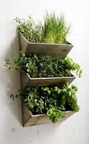 Herb Window Box Indoor Herb Planter Pots Window Boxes Baskets Ebay