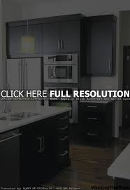 Best Plywood For Kitchen Cabinets Plywood Kitchen Cabinets 25 Best Plywood Cabinets Ideas On