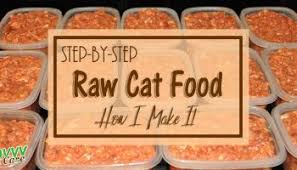 canning raw pet food why do it savvy pet care