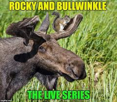 Moose Meme - it s squirrel week from now to the 25th a robroman event imgflip