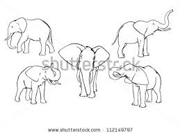 elephant outline stock images royalty free images u0026 vectors