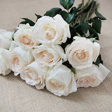 white roses for sale supply different types of fresh cut flowers view 2018