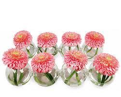 Miniature Flower Vases Wholesale Interconnected Bud Vase Spheres Clear End To End