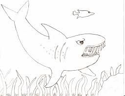tiger shark coloring free printable shark coloring pages