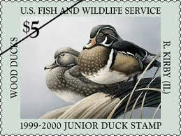 17 best ideas about duck 17 best junior duck sts images on pinterest sts ducks and