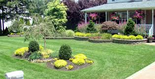 what are some good backyard landscaping ideas long island
