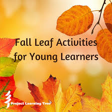 leaf activities for young learners project learning tree