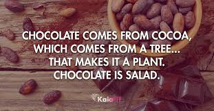 Chocolate Meme - dark chocolate and wine the healthy girl s guide to a perfect pairing