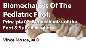 Subtalar Joint Fracture Biomechanics Of The Pediatric Foot Principle 07 Biomechanics Of