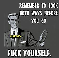 Insulting Memes - 65 best insult memes images on pinterest ha ha insulting memes