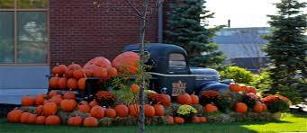 the history of halloween phillip u0027s natural world 1 0 3