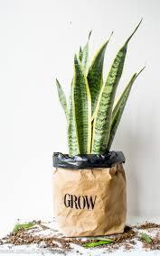diy kraft paper planter bag tutorial grillo designs water safe kraft paper planter bags for your home grillo designs www grillo