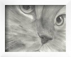 25 unique cat face drawing ideas on pinterest how to draw cats