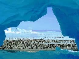 imagenes de la antartida los increibles misterios de la antártida despierta al futuro