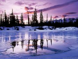 wallpaper desktop winter scenes microsoft desktop backgrounds winter scenes hd wallpapers desktop
