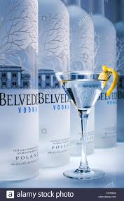 blue martini bottle belvedere vodka bottles and martini glass stock photo royalty