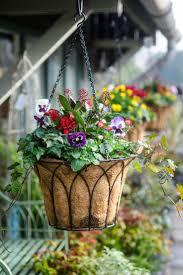 20 best winter hanging baskets images on pinterest winter