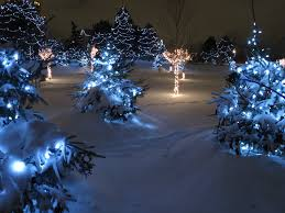 christmas light park near me file chinguacousy park christmas lights 2119702334 jpg wikimedia