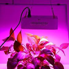 full spectrum light for plants 768 best grow lights images on pinterest led grow lights light