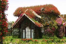 colorful flower gardens see a massive flower garden in the dubai desert mental floss