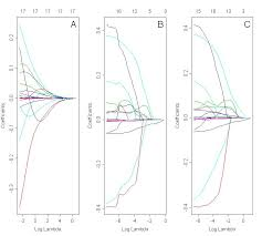 elastic nets r coefficients paths comparison of ridge lasso and elastic