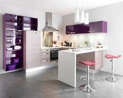 cuisine mauve decoration cuisine violette waaqeffannaa org design d intérieur
