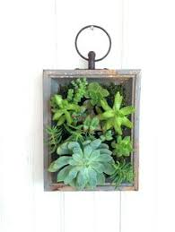 wall succulent planter planters vertical wall planters and