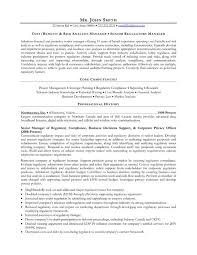 It Risk Management Resume 49 Best Management Resume Templates U0026 Samples Images On Pinterest