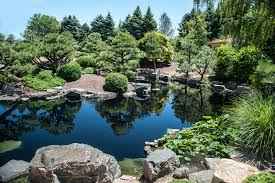 japanese native plants sho fu en the garden of the pine and wind in denver makes great