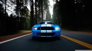 logo ford mustang shelby ford shelby cobra gt500 blue white stripes 1920x1080 hd wallpaper