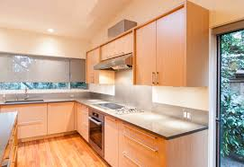 Rustic Birch Kitchen Cabinets Kitchen Awesome Build In Kitchen Designs Rustic Cabinets Painted