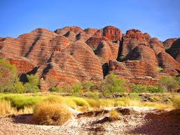 west australian native plants western australia attractions and landmarks wondermondo