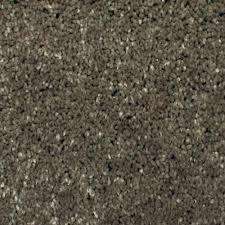 home decorators collection carpet sample gracious manner i