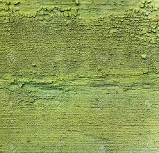 Green Wall Paint Abstract Green Wall Paint Peeling Texture And Background Stock