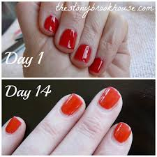 gel nails 14 day update the stonybrook house