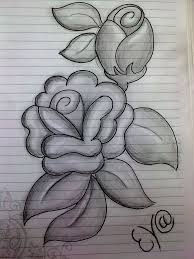 drawn flower pencil sketch pencil and in color drawn flower