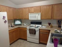 kitchen remodel cabinets great how to redo kitchen cabinets images gallery u2022 u2022 idyllic