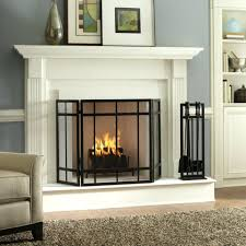 fireplace ideas 2017 screens mantel diy wood burning stove