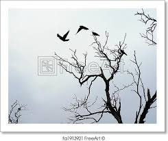 free print of shadow of birds flying birds flying dead