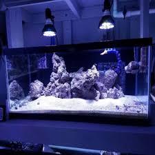led reef aquarium lighting 54w led reef aquarium lighting e27 par38 led full spectrum coral