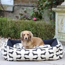 buy luxury designer dog beds cuckooland