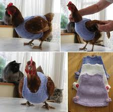 Goods Home Design Diy Diy Chicken Sweaters Home Design Garden U0026 Architecture Blog