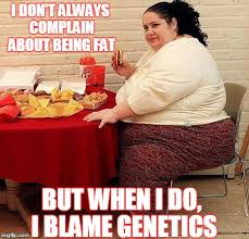 Fat People Memes - fat people problems memes