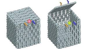 Dna Model Origami - origami dna robots intelligently delivery in living