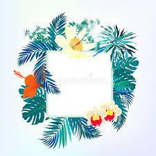 square card with tropical decor stock vector image 40819661