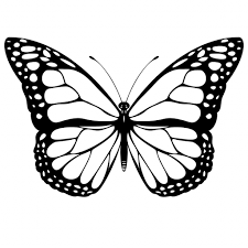 butterfly drawing easy easy drawings for kids butterfly clipart