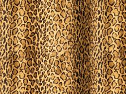 leopard print home decor leopard print wallpaper qige87 com